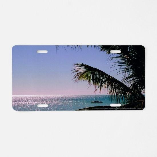 14x6at250MartelloOcean Aluminum License Plate
