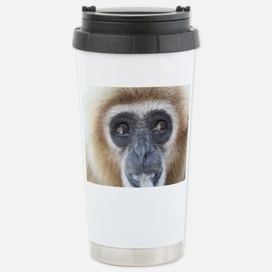 7%253A10%253A11%25202 Stainless Steel Travel Mug
