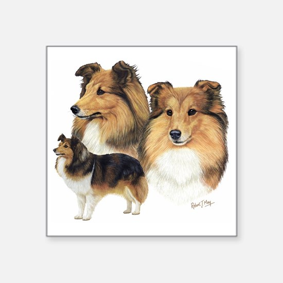"Sheltie Multi Square Sticker 3"" x 3"""