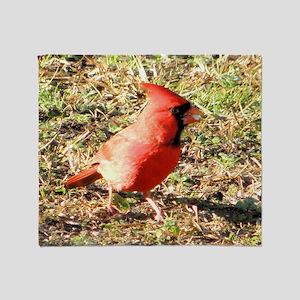Cardinal large framed print Throw Blanket