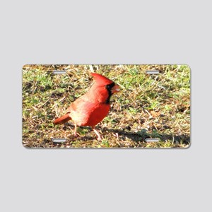 Cardinal small framed print Aluminum License Plate