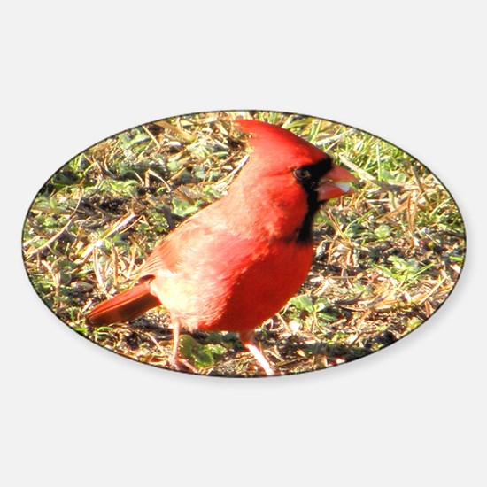 Cardinal mini wallet Sticker (Oval)