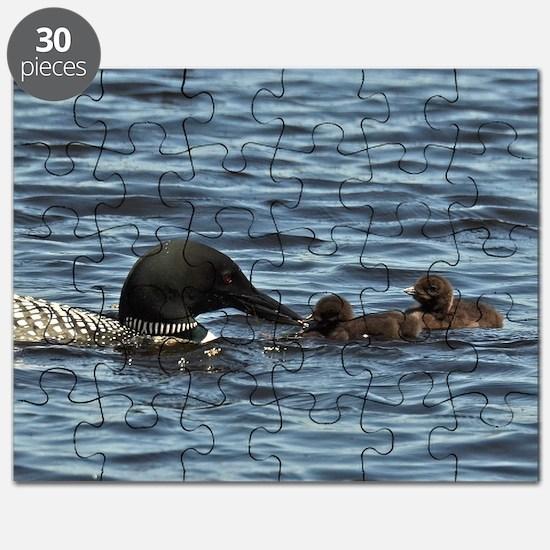 Loon feeding twins Puzzle