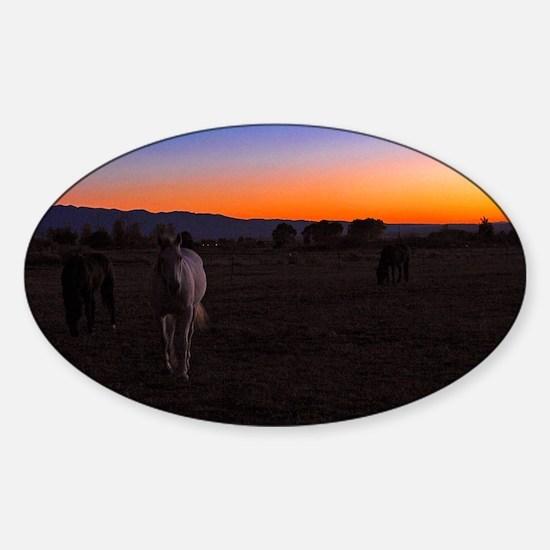 Night Horse Sticker (Oval)