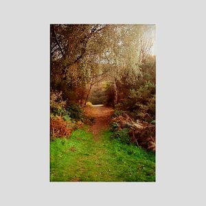 Autumn Path Rectangle Magnet
