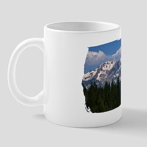 (16) Shasta On The Road Again Mug