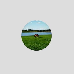 slider-horse Mini Button