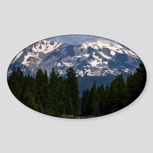 (14) Shasta On The Road Again Sticker (Oval)