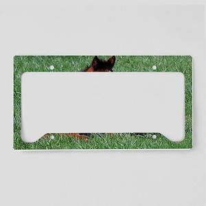 New Life License Plate Holder