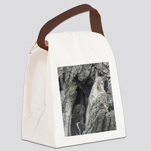 P5060139 Canvas Lunch Bag