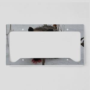 PO11x17Poster License Plate Holder