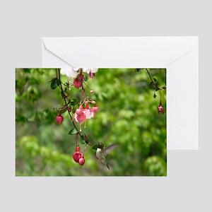 HB14.7x9.67 Greeting Card