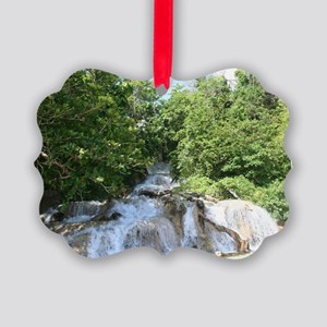 dunns falls Picture Ornament