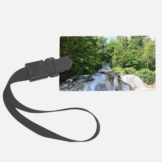 dunns falls Luggage Tag