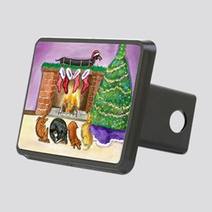 fireplacedogsCP Rectangular Hitch Cover