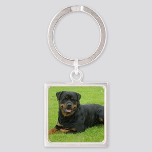 Rottweiler 9W025D-046 Square Keychain