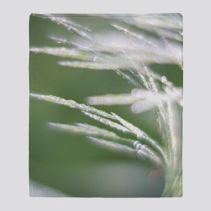 Prairie Grass in Diamonds Throw Blanket