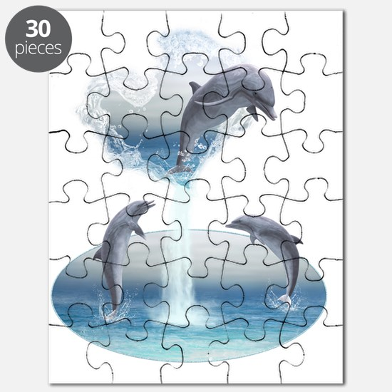 The Heart Of The Dolphins Puzzle