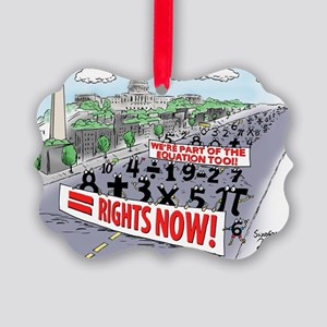 Pi_74 Equal Rights (20x16 Color) Picture Ornament