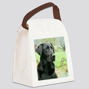 !00cover-070408 033d Canvas Lunch Bag