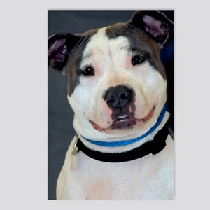 amstaff-mousepad Postcards (Package of 8)