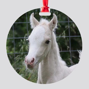 Welsh Pony foal Round Ornament