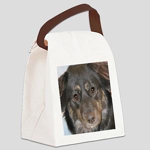 Australian Shepherd Photo Canvas Lunch Bag