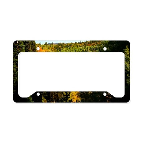 Pine Tree Aspen Canyon License Plate Holder By Admin Cp7673574