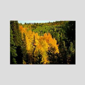 Pine tree Aspen canyon Rectangle Magnet