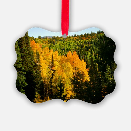 Pine tree Aspen canyon Ornament