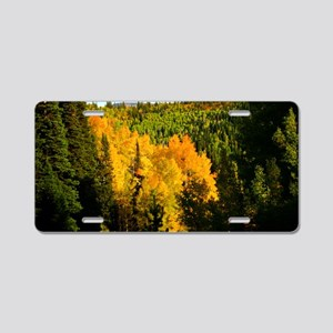 Pine tree Aspen canyon Aluminum License Plate