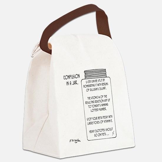 6043_physics_cartoon Canvas Lunch Bag