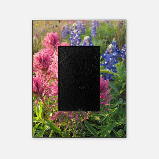 texas bluebonnets and pinks Picture Frame