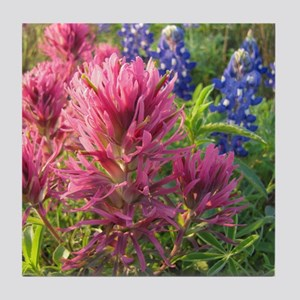 texas bluebonnets and pinks Tile Coaster