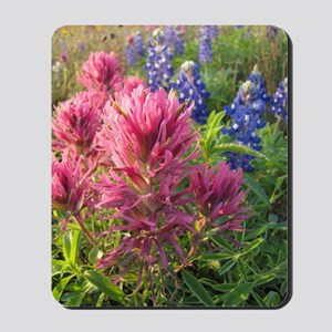 texas bluebonnets and pinks Mousepad