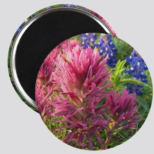 texas bluebonnets and pinks Magnet