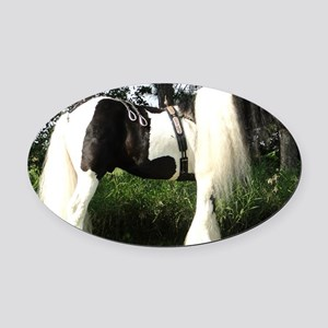 Mickey Show Oval Car Magnet