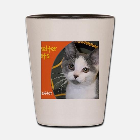 Shelter Cats Shot Glass