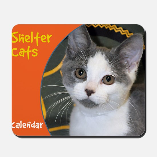 Shelter Cats Mousepad