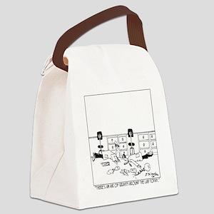 5896_physics_cartoon Canvas Lunch Bag