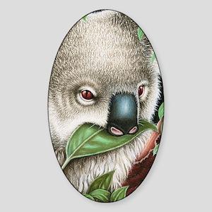 Koala Munching (Kindle Sleeve) Sticker (Oval)