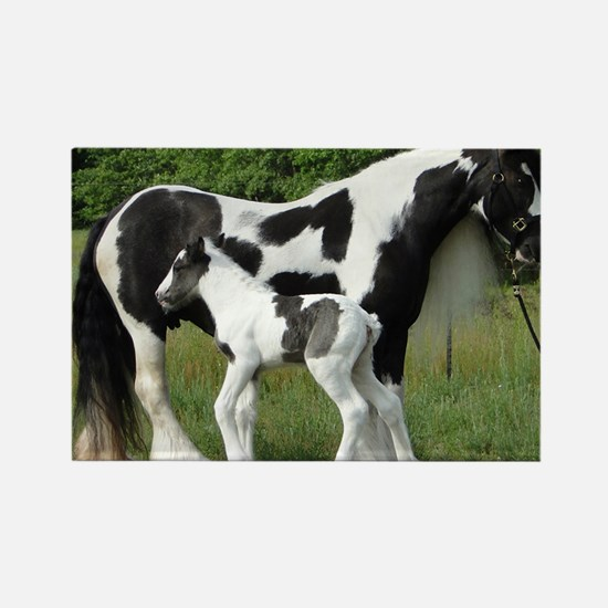 Calendar Chavali and foal Rectangle Magnet