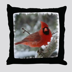 CA1010 Throw Pillow