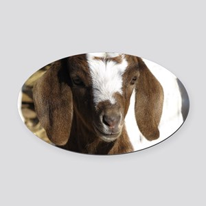 Cute kid goat Oval Car Magnet