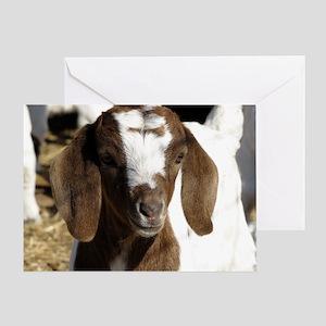 Cute kid goat Greeting Card