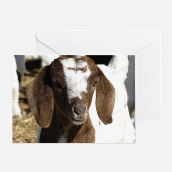 Cute kid goat Greeting Card