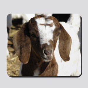 Cute kid goat Mousepad