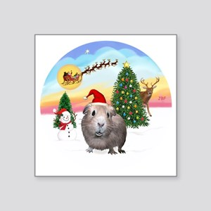 "R-TakeOff-GuineaPig2 Square Sticker 3"" x 3"""