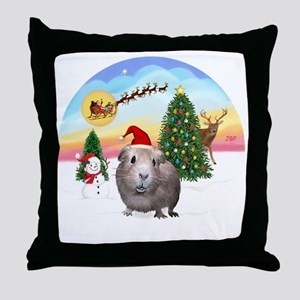 R-TakeOff-GuineaPig2 Throw Pillow