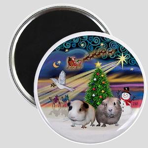R-XmasMagic-Two Guinea Pigs Magnet